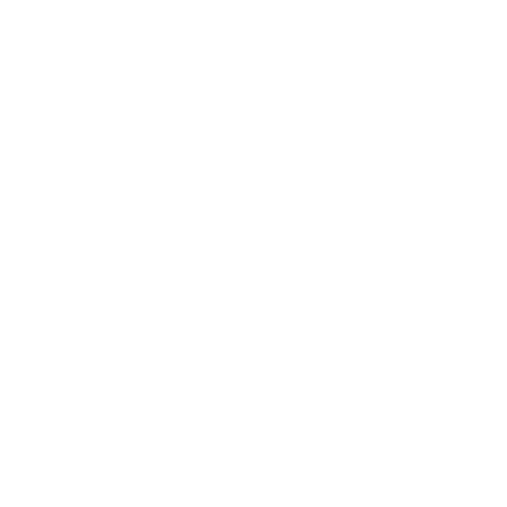 Burning Bird Media